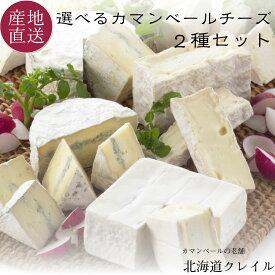 北海道カマンベールチーズの老舗 選べる生カマンベールチーズ2種セット (カレ・ロワレ・おいこみブルー) お中元 チーズ ギフト 【送料無料】