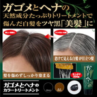 beaurushstore: GA GOME and henna color treatment hair color hair ...