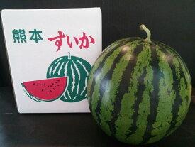 植木すいか Lサイズ(1玉入6kg)熊本県 植木産