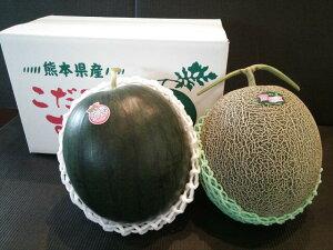 熊本植木産 黒小玉すいか と 肥後グリーンメロン(各1個入)