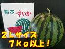 熊本県産 植木すいか 2Lサイズ(1玉入約7kg)