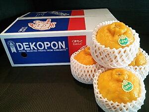 送料無料 ご贈答 お年賀 お歳暮 フルーツ 熊本県産 デコポン 9玉入 約2.5kg