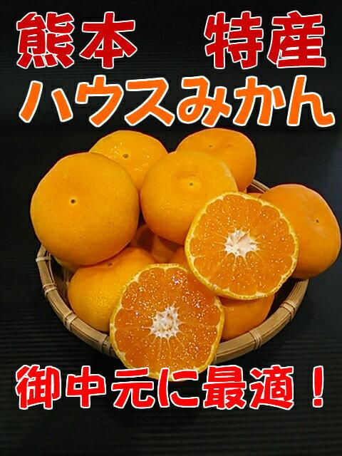 熊本県産ハウスみかんMサイズ(約2.5kg23玉〜26玉入り)