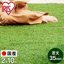 【ポイント5倍!】【先行予約】人工芝 ロール 2m×10m 20平米 IP-35210 送料無料 人工芝 20平米 芝生 35mm リアル人工…