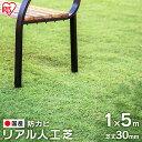 リアル人工芝 IP-3015人工芝 1m×5m 国産 人工芝生 芝生 芝マット アイリスオーヤマ 人工芝マット 芝生マット アイリ…