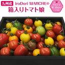 母の日 プレゼント ギフト 九州産 iroDori MARCHEの箱入りトマト娘 800g
