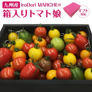 【ギフトにも!】九州産 iroDori MARCHEの箱入りトマト娘 通常版 800g ギフト版 600g カラフルトマト 産地直送