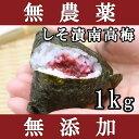 梅干し 無添加 無農薬 しそ漬南高梅 1kg 熊野のご褒美 紀州産 無化学肥料 梅干 ご自宅用にもお歳暮などのギフト・贈り物にもおすすめです。 彩り屋