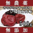 梅干し 無添加 無農薬 しそ漬南高梅 500g 熊野のご褒美 紀州産 無化学肥料 梅干 ご自宅用にもお歳暮などのギフト・贈り物にもおすすめです。 彩り屋