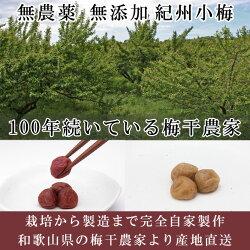 無農薬小梅白干し1kg熊野のご褒美無添加無化学肥料紀州産梅干し平成27年度産ご自宅用にもお歳暮などのギフト・贈り物にもおすすめです。彩り屋_