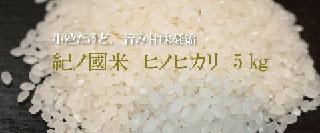 和歌山県産紀ノ國米(きのくに米)5kg彩り屋_