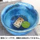 めだかハウス横型 茶ぼかし 信楽焼 めだか鉢 水鉢 金魚鉢 睡蓮鉢 メダカ鉢 陶器 メダカ 水槽 アクアリウム 彩り屋