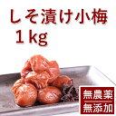 梅干し 無添加 無農薬 紀州 しそ漬小梅 1kg 熊野のご褒美 無化学肥料 梅干 ご自宅用にもお歳暮などのギフト 贈り物に…