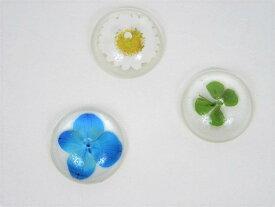 香立 香皿 押し花 ガラス