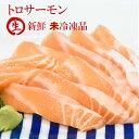 トロサーモン 刺身用サーモン 生 500g  サーモン 生 さけ 鮭 鮮魚 新鮮 寿司 刺身 さしみ 魚 ギフト お取り寄せグルメ ギフト サーモ…