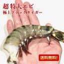超 特大エビ 1.8kg 約30尾 送料無料 えび 冷凍エビ エビ 海老 特大 ブラックタイガー 大きい海老 エビフライ 海老フライ えびフライ 業…
