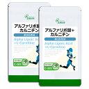 【SALE20%OFF】 アルファリポ酸+カルニチン 約3か月分×2袋 C-205-2 送料無料 リプサ Lipusa サプリ サプリメント