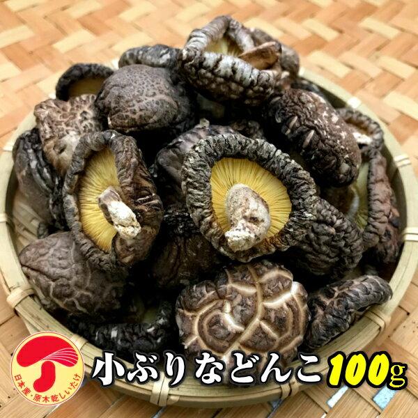干し椎茸 九州産 小ぶりなどんこ 100g 原木栽培 (国産 干ししいたけ 干しシイタケ 乾燥しいたけ)