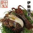 伊勢海老冷凍大(330〜380g)[魚介類](活〆冷凍)