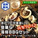 アワビが美味い!豪華なBBQセット!(アワビ4個サザエ8個大アサリ8個)[魚介類] ランキングお取り寄せ