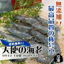 天使の海老 Mサイズ 生食用 30/40サイズ 1kg 冷凍[魚介類] ランキングお取り寄せ