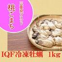 特大2Lサイズ IQF冷凍ムキ牡蠣 桃こまち  1kg