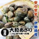 あさり貝 国産大粒  1kg 約70粒〜90粒 [貝]