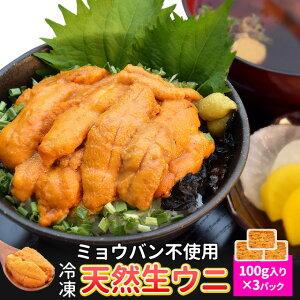 うに 100g×3 天然冷凍生ウニ 刺身雲丹 ミョウバン不使用 無添加 最高級グレードの雲丹 海鮮丼