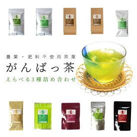 日本茶 伊勢茶選べるお茶3袋詰合せ メール便送料無料 農薬・肥料不使用栽培 無農薬 無肥料 水出し緑茶