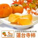 伊勢蓮台寺柿5kg【送料無料】天然記念物の柿 秋季限定 完熟柿