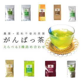 日本茶 伊勢茶 選べる お茶 3袋詰合せ メール便送料無料 農薬・肥料不使用栽培 無農薬 無肥料 水出し緑茶 がんばっ茶
