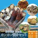 美し国豪華海鮮海宝焼 伊勢海老中2尾 鳥羽産牡蠣8個 さざえ2個 大あさり2個 送料無料 (牡蠣ナイフ、片手用軍手付)冷…