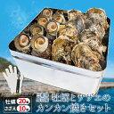 牡蠣 さざえカンカン焼きセット(冷凍)送料無料 牡蠣20個とサザエ10個 ミニ缶入り (牡蠣ナイフ・片手用軍手付き)殻…