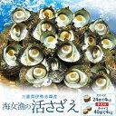 【クーポンで200円OFF】【送料無料】三重県伊勢志摩産海女漁の天然活さざえ4kgサザエのサイズと個数が選べます
