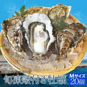 牡蠣 Mサイズ 20個入 冷凍殻付き牡蠣 産地厳選 加熱用(発泡箱入・牡蠣ナイフ・片手用軍手付き)海鮮バーベキューセット