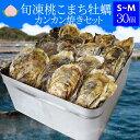 牡蠣 カンカン焼きセット S〜Mサイズ 30個入 冷凍牡蠣 送料無料 旬凍桃こまち 鳥羽産 ミニ缶入り(牡蠣ナイフ・片手用…