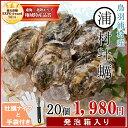 【クーポンで50円OFF】浦村牡蠣20個 殻付き牡蠣 (牡蠣ナイフ・片手用軍手付き) 三重県鳥羽産(加熱用) 発泡箱入り