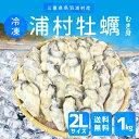 牡蠣むき身【新発売セール】送料無料 冷凍 浦村牡蛎 特大2Lサイズ1kg(約25〜30個) 加熱用 伊勢志摩産浦村カキを身入りの良い時期に瞬間冷凍