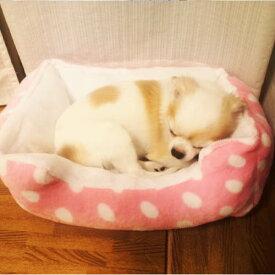 ペットベッド イヌ ドッグ 犬 ベッド ドッグベット 冬 暖かい あったかペットベット 室内 おしゃれ かわいい 水玉 ネコ 動物 猫