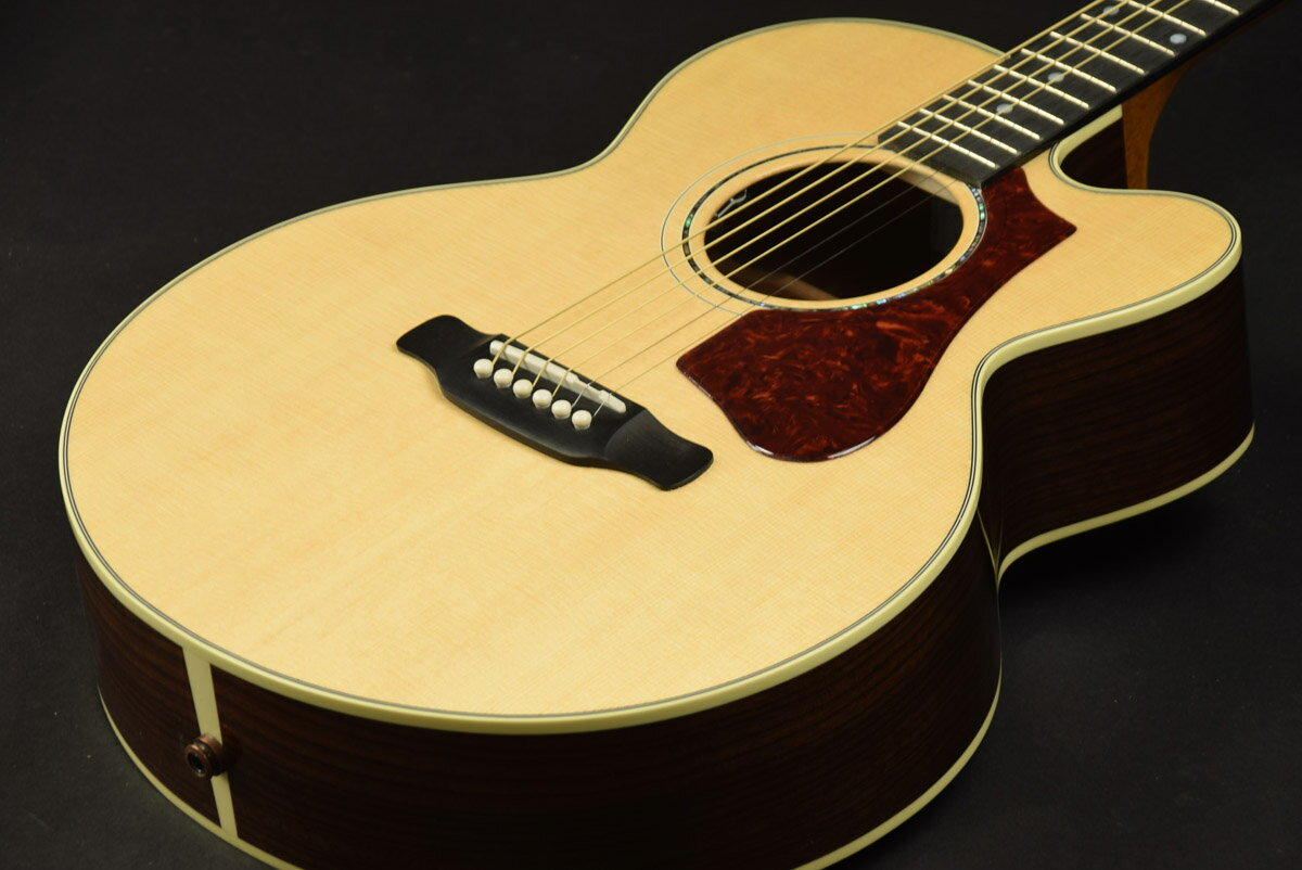 Gibson / Parlor Rosewood AG Natural 【S/N:13617038】【池袋店】