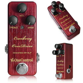 One Control / Cranberry OverDrive【横浜店】