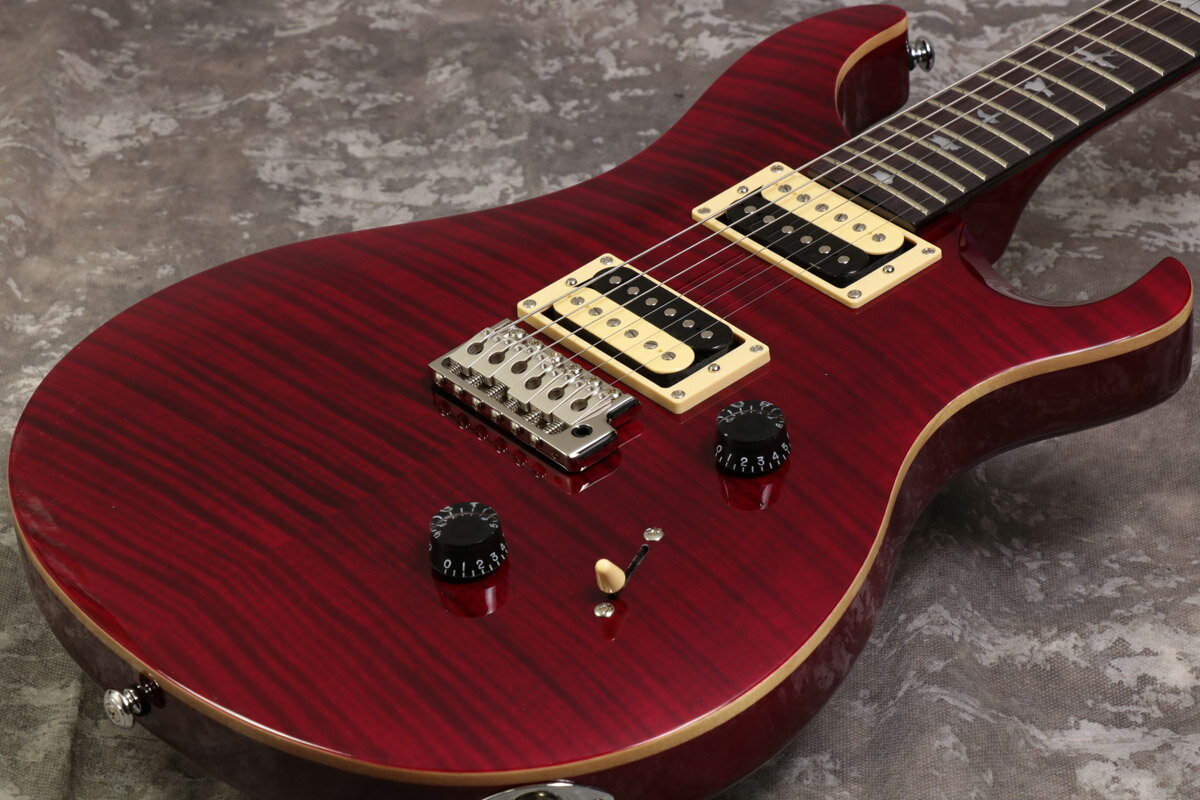 Paul Reed Smith (PRS) / SE Custom 24 Black Cherry 、【梅田店】