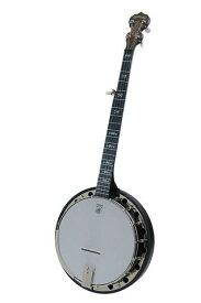 DEERING / A2 Artisan Goodtime Two Banjo 【リゾネーターバンジョー】 ディーリング バンジョー リゾネーター 【お取り寄せ商品】