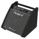 Roland 電子ドラム用モニタースピーカー PM-100(接続ケーブル別売)【YRK】