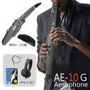 【在庫あり】Roland ローランド / Aerophone AE-10G エアロフォン グラファイトブラック デジタル管楽器 【オリジナル…