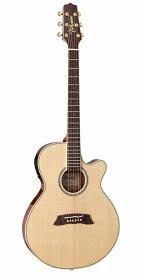 【在庫有り】 Takamine / TSP138C N タカミネ エレアコ アコースティックギター アコギ 【WEBSHOP】