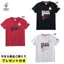 【即納/プレゼント付き】 ラグビーワールドカップ2019TM日本大会 オフィシャルライセンス商品 ジャパングラフィックテ…