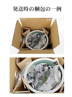 信楽焼睡蓮鉢白ボール10号(直径30cm高さ16cm)+お好きな水草プレゼント(アサザガガブタトチカガミムチカデンジソウ)【送料無料】【水鉢メダカ鉢金魚鉢ハス鉢茶碗蓮鉢ビオトープスイレン鉢】
