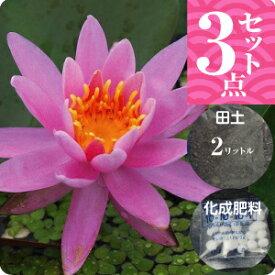温帯スイレン 「ピンク・オパール」(中型) 3点セット【裸苗+田土2L+すまし液0.5L+肥料】【水生植物・浮葉植物】【睡蓮・すいれん】