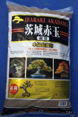 赤玉土二本線細粒ゴールド袋14L【小品盆栽・多肉植物・山野草・花木】